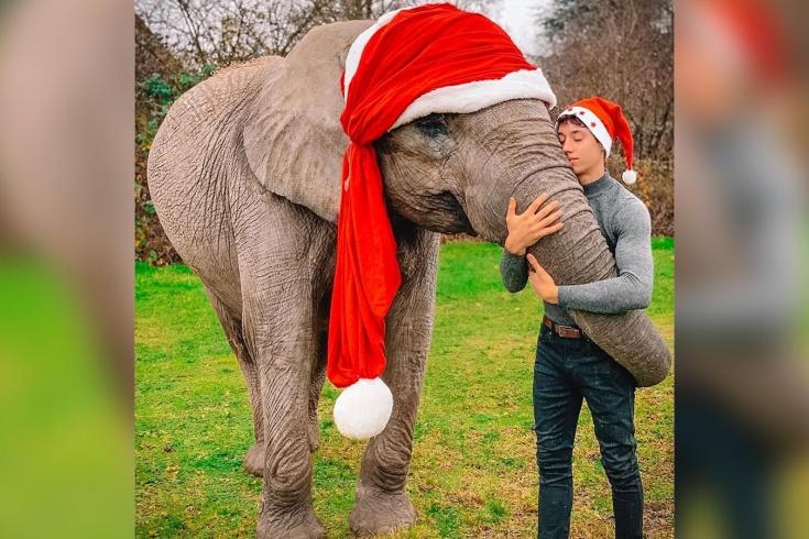 Немецкий акробат Рене Кассели забивает данки через слонов